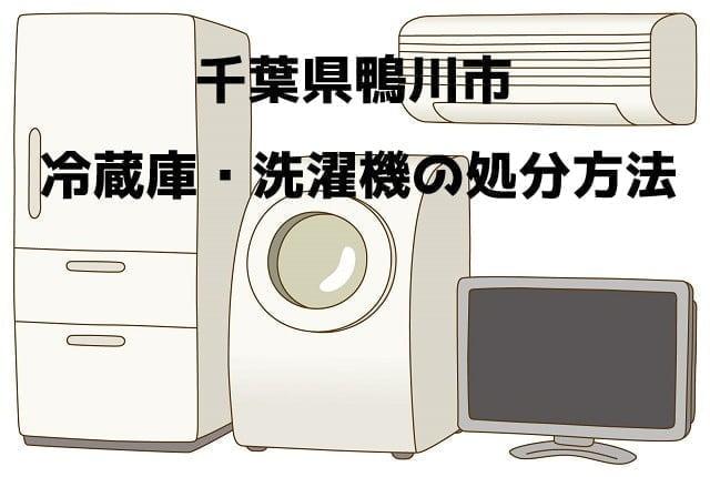 鴨川市  冷蔵庫洗濯機 不用品回収 おすすめ業者