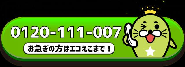 エコえこ電話番号